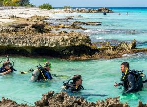 Duikvakantie op Bonaire