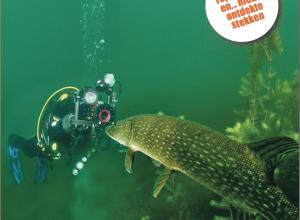 De nieuwe Duikersgids. Verrassend duiken in 2016