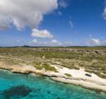 Universiteit Wageningen zoekt studenten voor koraalonderzoek op St. Maarten