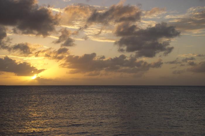 Duiker overleden op Bonaire na duik in Playa Lechi
