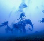 Dahab beschermt haar riffen met onderwaterbeelden
