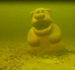 Ken jij The Great Bear Reef?