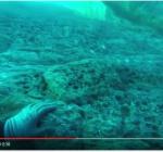 Eerste onderwaterbeelden ingestortte Azure Window