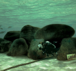 Twiske krijgt onderwater themapark. Jouw hulp is welkom!