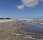 Wereld Natuurfonds zoekt Projectmanager Noordzee