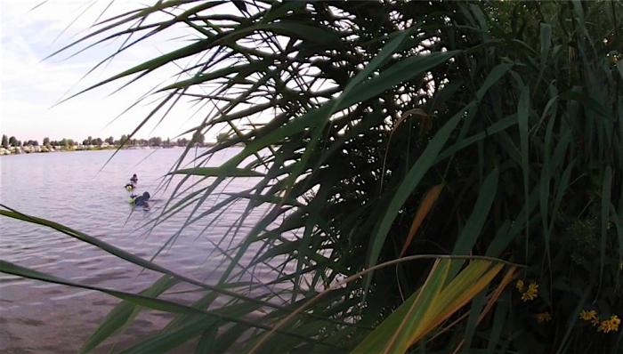 Nieuwe duikstekken ontdekt in Nederland