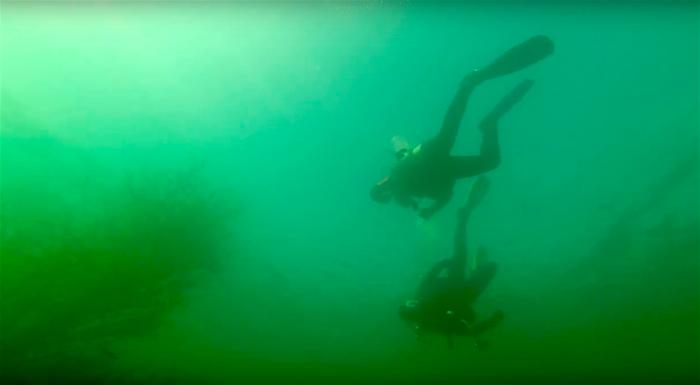 Vrouw gewond na duikongeval in Grienenbergsee
