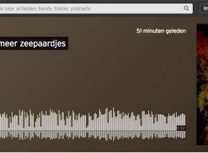 Duikersgids interview zeepaardjes met Omroep Zeeland