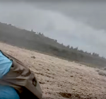 Duiker uit golven gered  aan Oostkust Bonaire