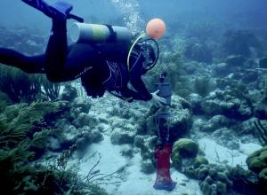 Onderzoek Nationaal Marine Park Bonaire