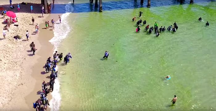 Wereldrecordpoging schoonmaakduiken in Florida
