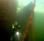 """""""Fuiken zijn prachtige toevoegingen aan onze duikstekken"""""""