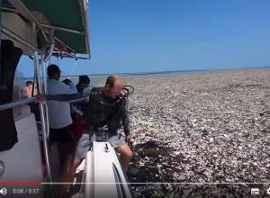 Plastic zee voor de kust van Honduras