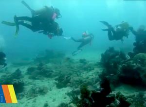 Duiker brengt toeristen in levensgevaar met duiktank 'grapje'
