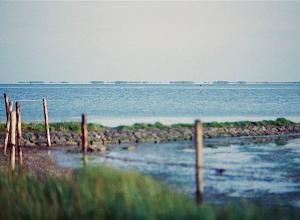 VVD: 'Schrap Grevelingenmeer als beschermd natuurgebied'