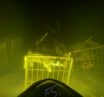 Kooien met dieren. Lugubere vondst in Nederlandse duikstek