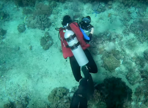 Als je het water uit je onderwaterfoto's haalt...