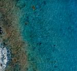 Vervuiling stranden Bonaire subjectief