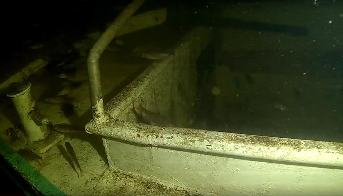 Diefstal in Onderwaterpark Twiske