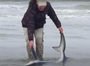 Youssef vertelt hoe hij blauwe haai bij Ouddorp redde