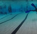 """""""Nederlandse zwembaden moeten met spoed weer open!"""""""