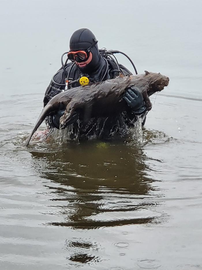 Duiker vindt dode bever tijdens duik in Thorn