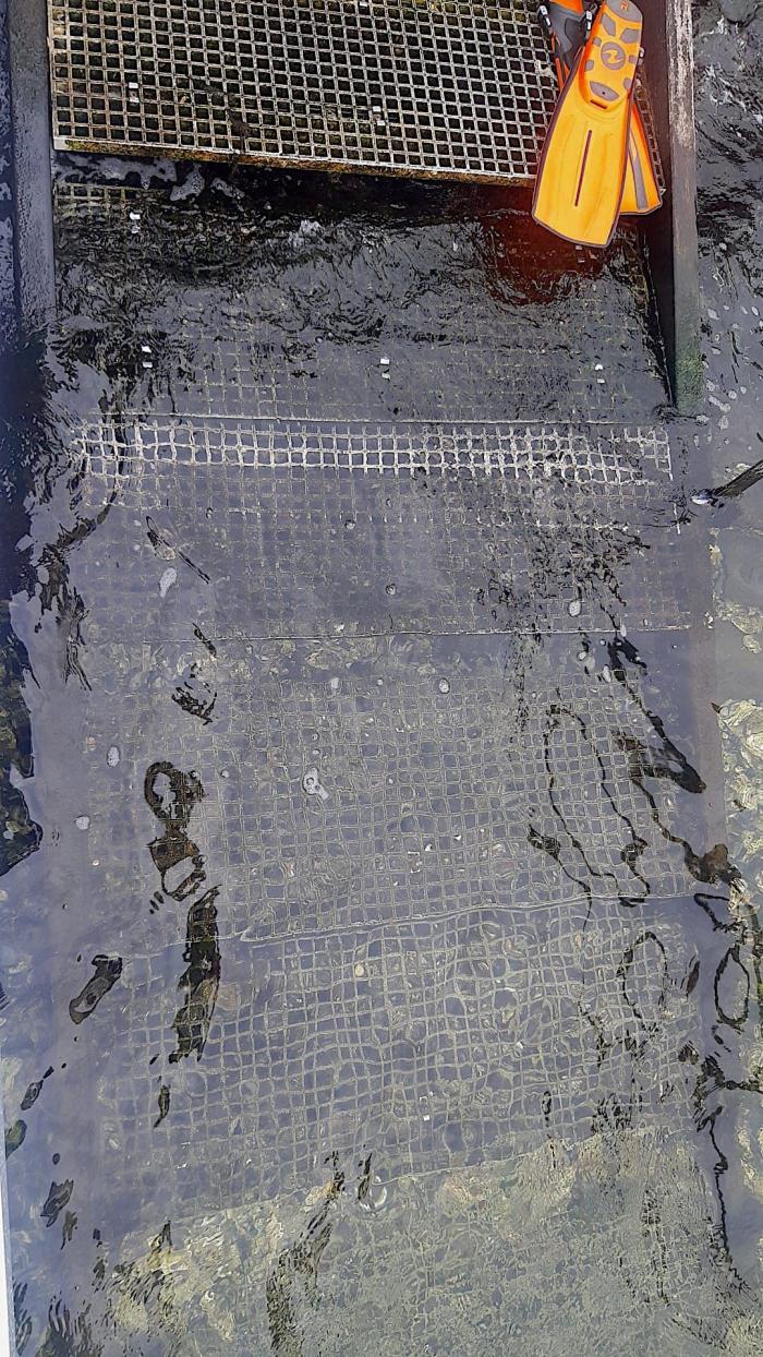 Trap Den Osse Nieuwe Kerkweg defect