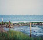 De verborgen duikparel voor onderwaterfotografen