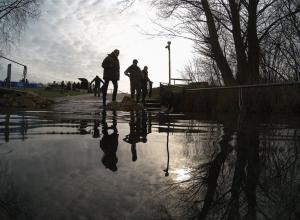 Tientallen spiegelkarpers uitgezet in Boschmolenplas