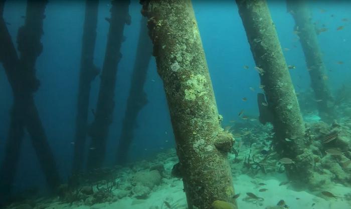 Salt Pier tijdelijk afgesloten voor duikers