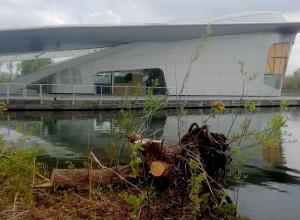 Snoeiwerk Haarlemmermeerse bosplas verpest onderwaterwereld