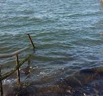 Zo ziet de schade bij de Zeelandbrug eruit