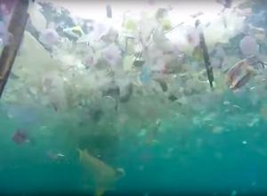Carnival Cruise krijgt 20 miljoen boete voor dumpen van afval in zee