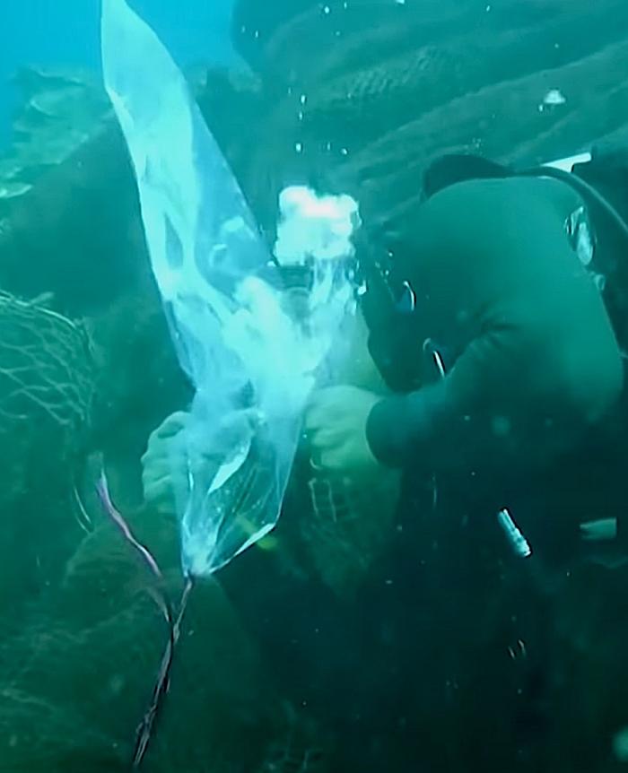 Duikers redden koraalrif van gigantisch net met deze slimme truc