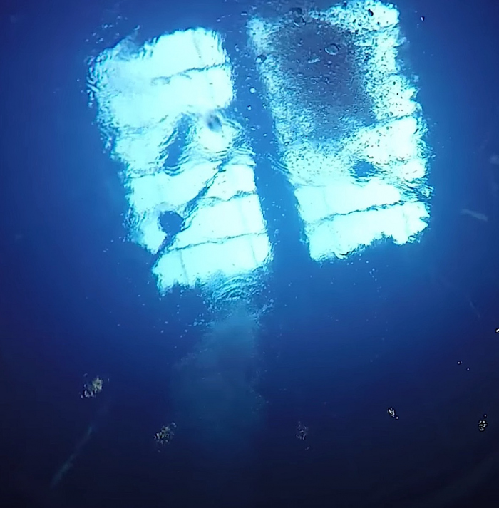 DiveWorld Enschede gaat weer open!