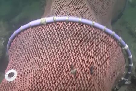 Fuik kapot gesneden bij duikplaats Zoetersbout