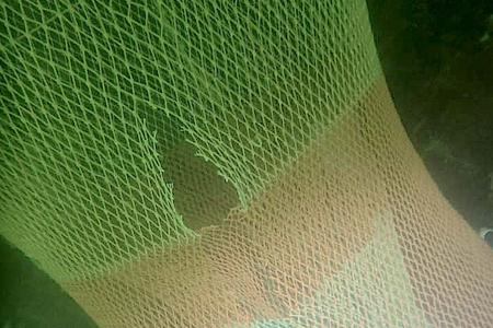 Stop met het kapot snijden van netten!