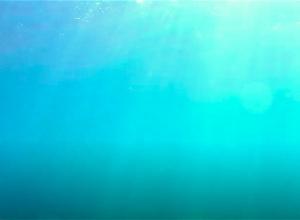 Waarschuwingen en negatieve zwemadviezen voor duikstekken