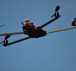 Australie zet drones en app in tegen haaienaanvallen