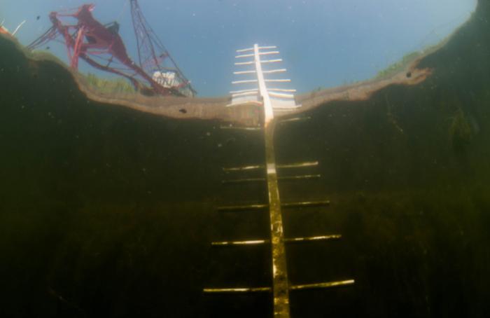 Opening nieuwe duikstek in Helmond