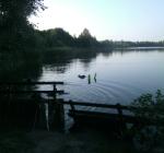 Flevo-landschap houdt vast aan duikverbod Casteleynsplas