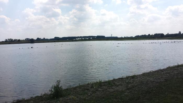 Nieuwe duikstek ontdekt in Gelderland